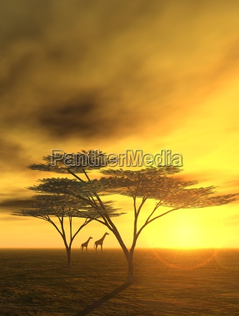 sera in africa