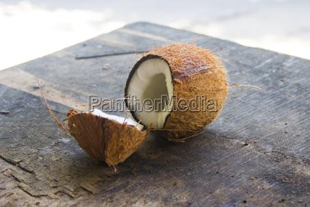 polpa aperto acuto noce di cocco