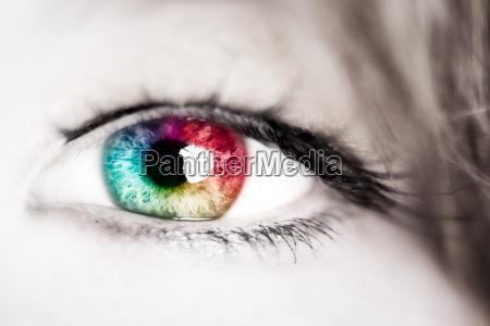 colore occhio organo spettro iris farbspektrum