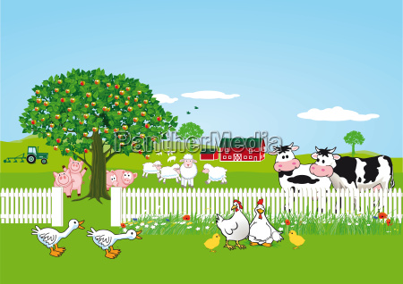rurale animale animali toro agricoltura pecora