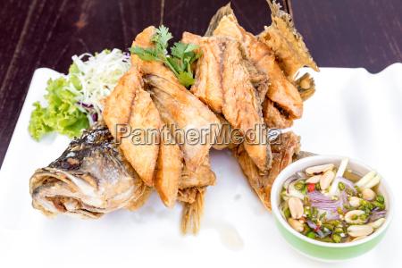 ristorante cibo pescare cucina cucinare piatto